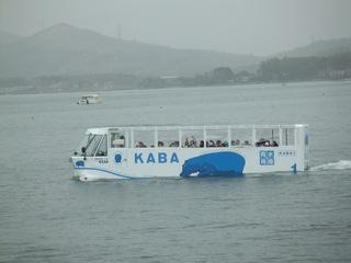 海に浮くカバ.JPG